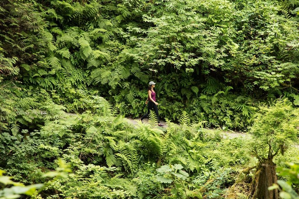 KEEN Terradora Ethos Walking