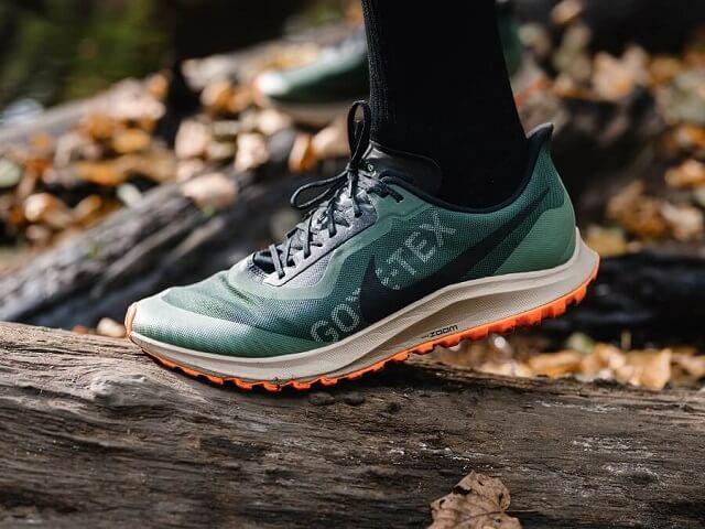 Nike Air Zoom Pegasus 36 Trail GTX Trailrunning Laufschuhe im Vergleich 2019