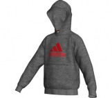 Adidas - Kids Essential Logo Hoody -HW12 kids Sport apparel